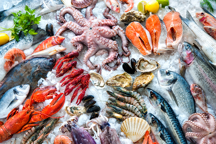 Different kinds of seafood